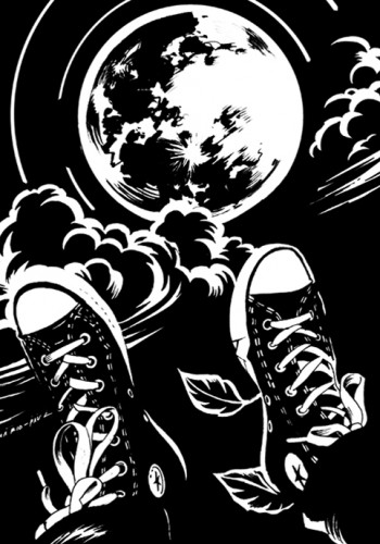 Moon trip D